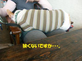 9のコピー.jpg
